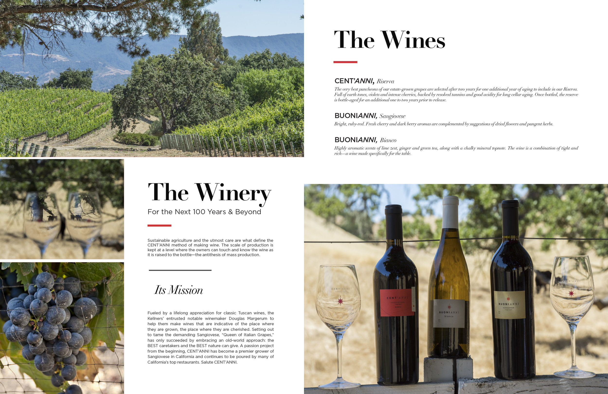 Brochure_Centanni-Vineyard-V5-8.jpg