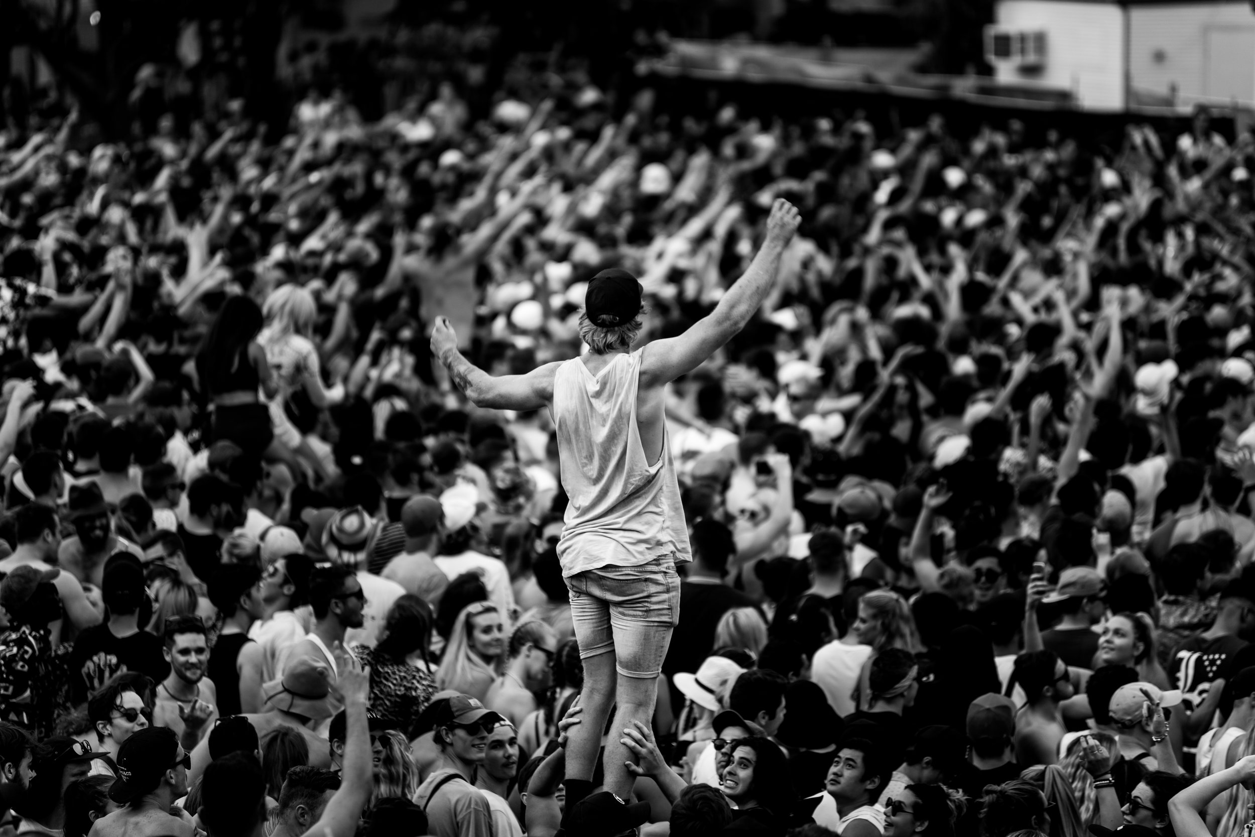 Fomo Crowd