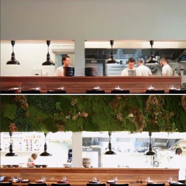 Bloodwood Botanica | Restaurant fit out artificial green wall