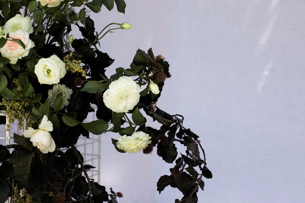Bloodwood Botanica | Noosa Wedding Flowers