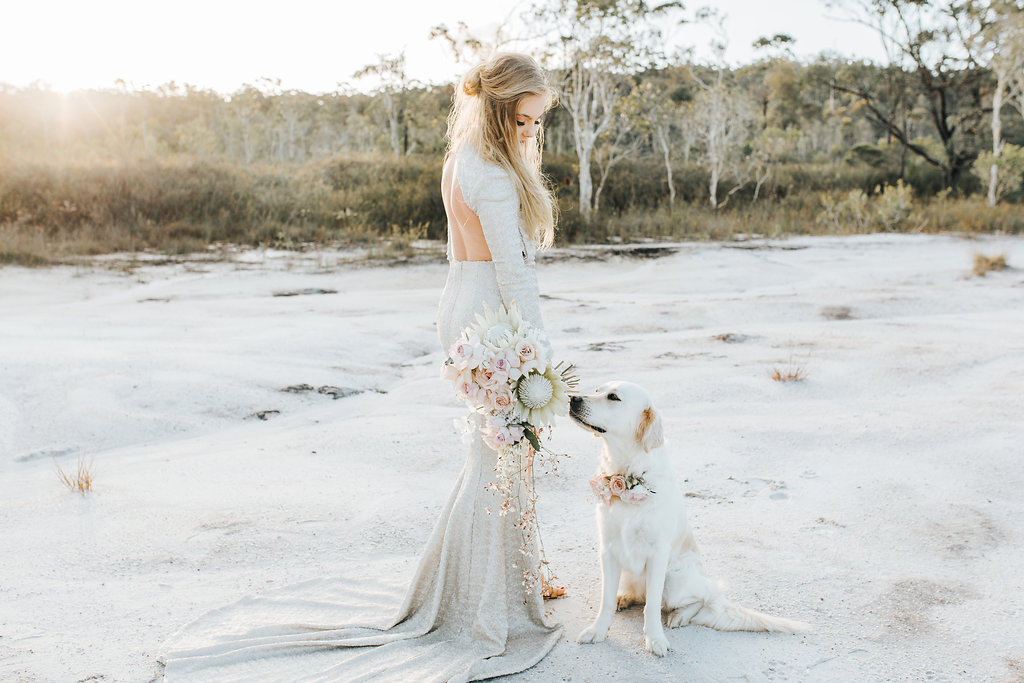 Bloodwood Botanica   Wedding Dogs