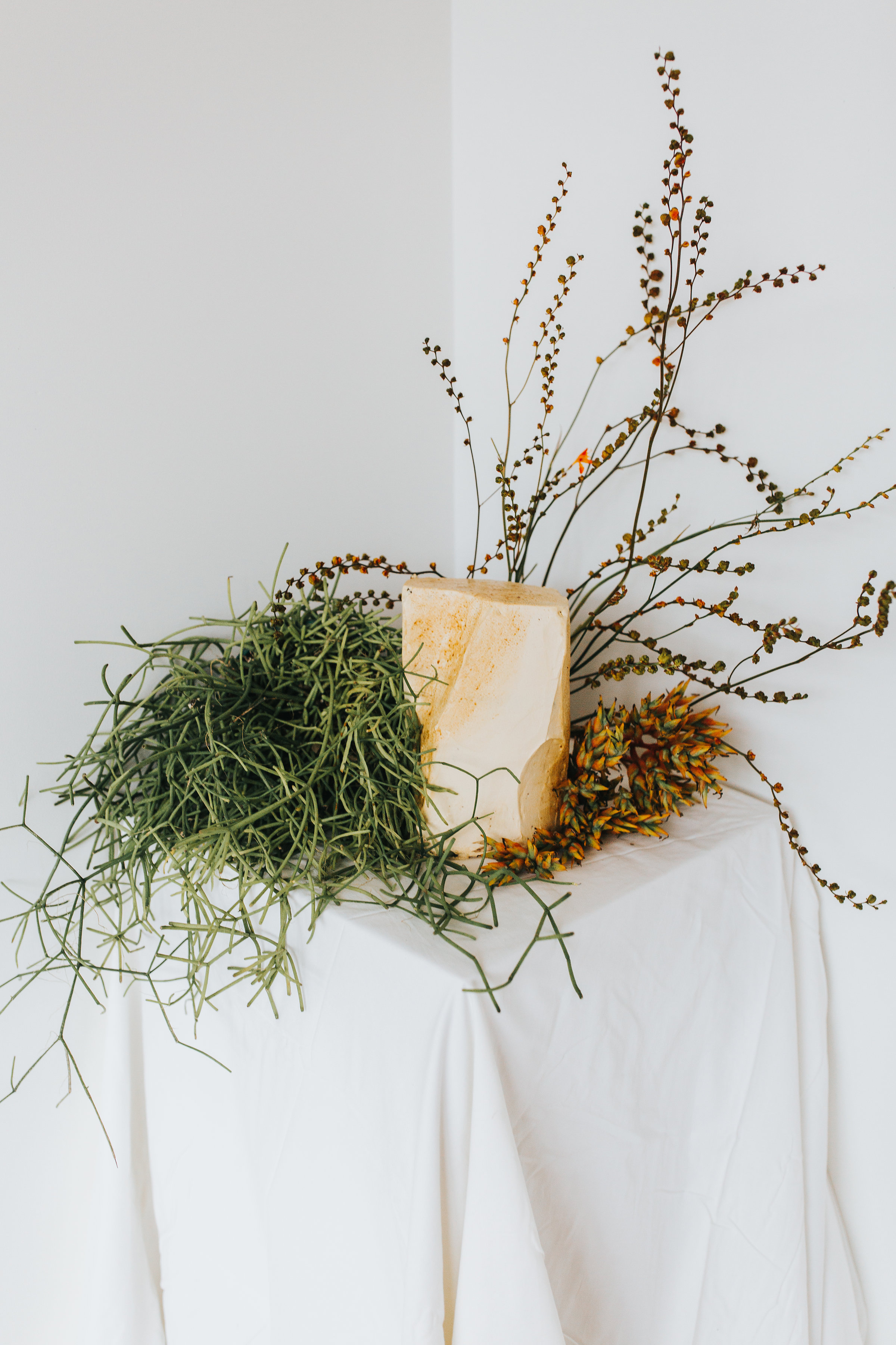 Bloodwood Botanica | Sand Dunes Cake