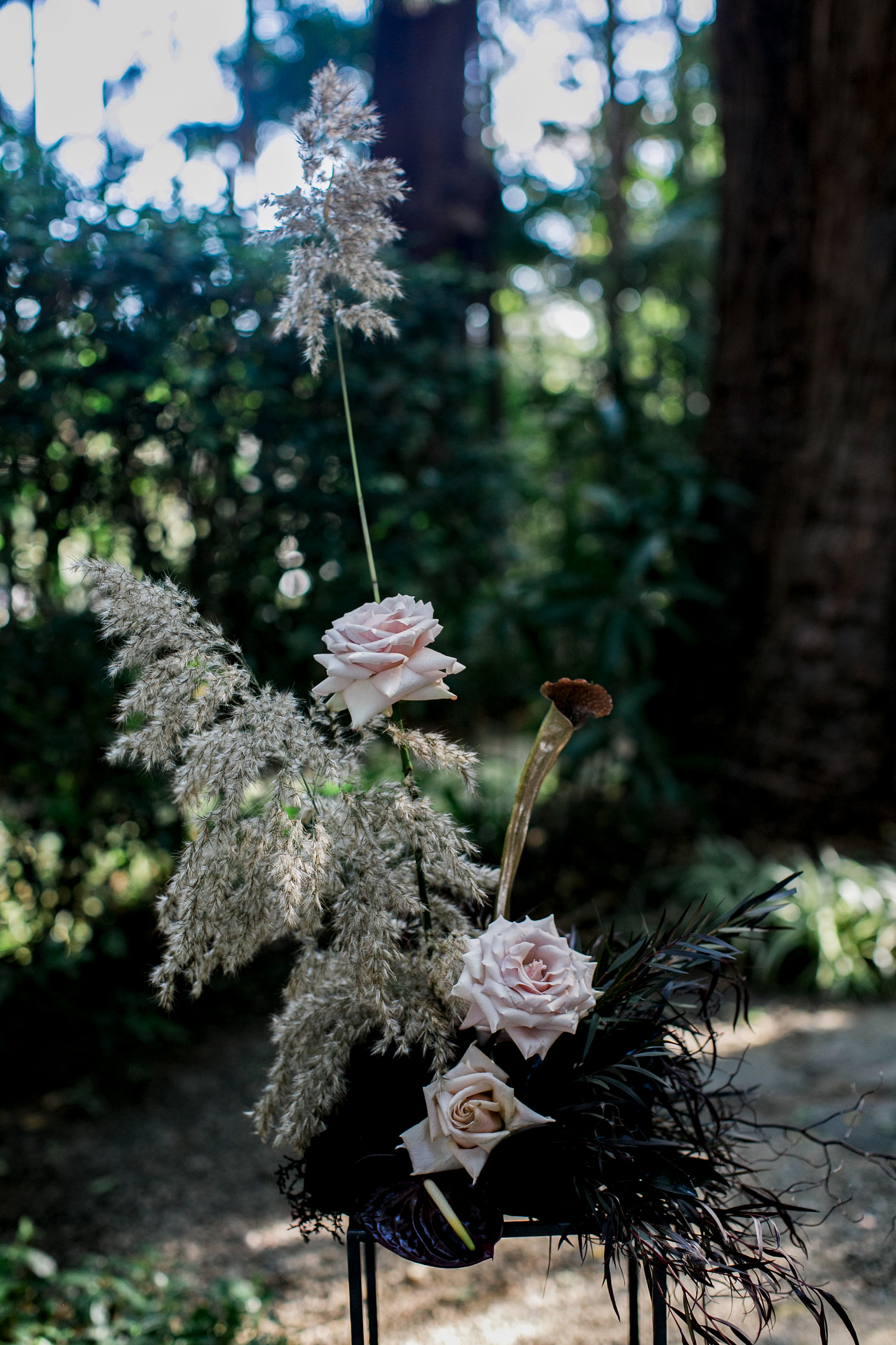 Bloodwood Botanica   PEW ENDS