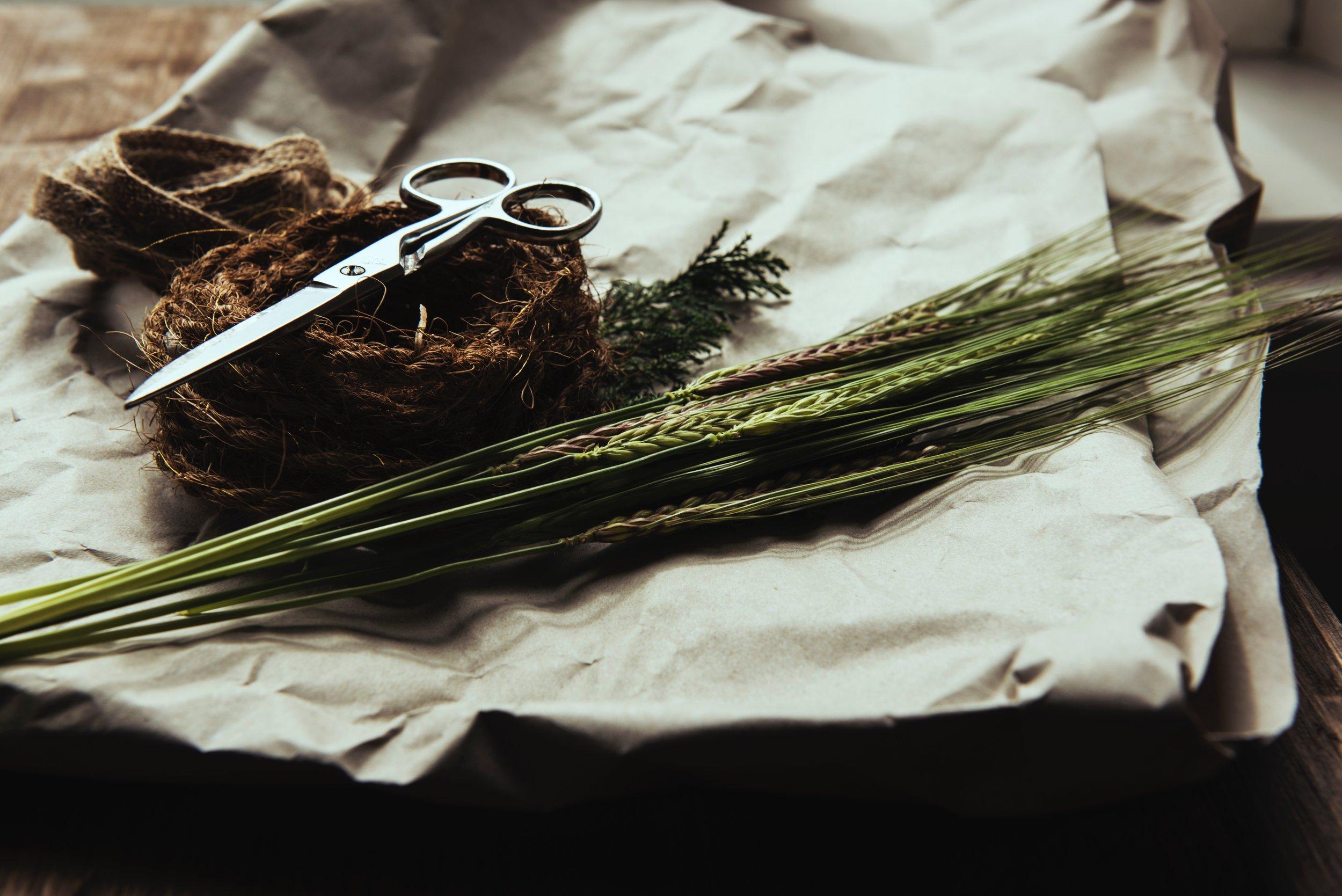 scissors_garden.jpg