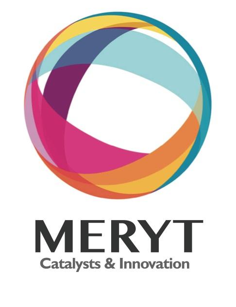 Logo MERYT.jpg