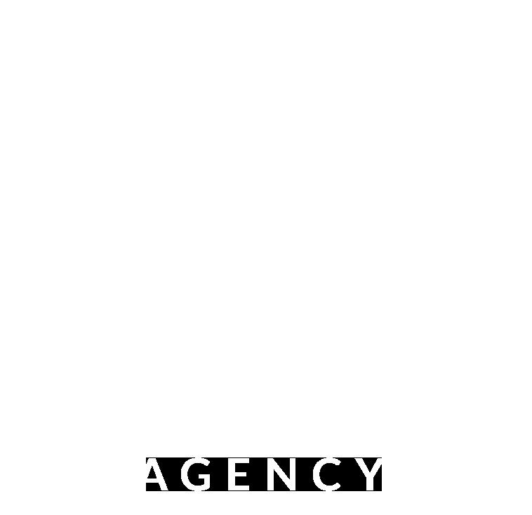 NV-Agency.png