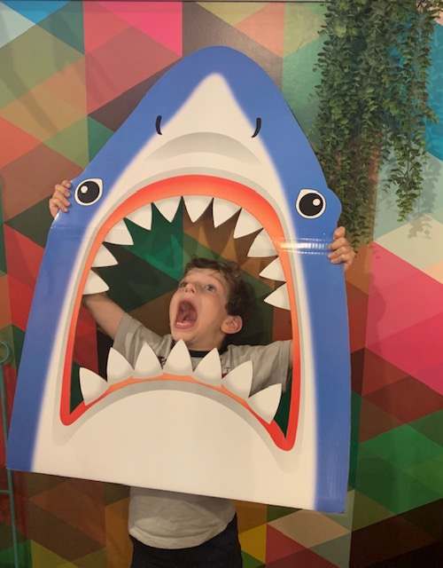 shark bite.jpg