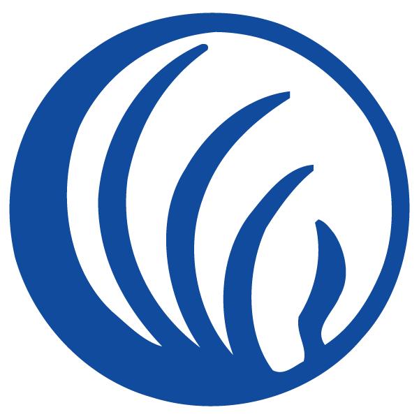 NAMI Austin Logo.png