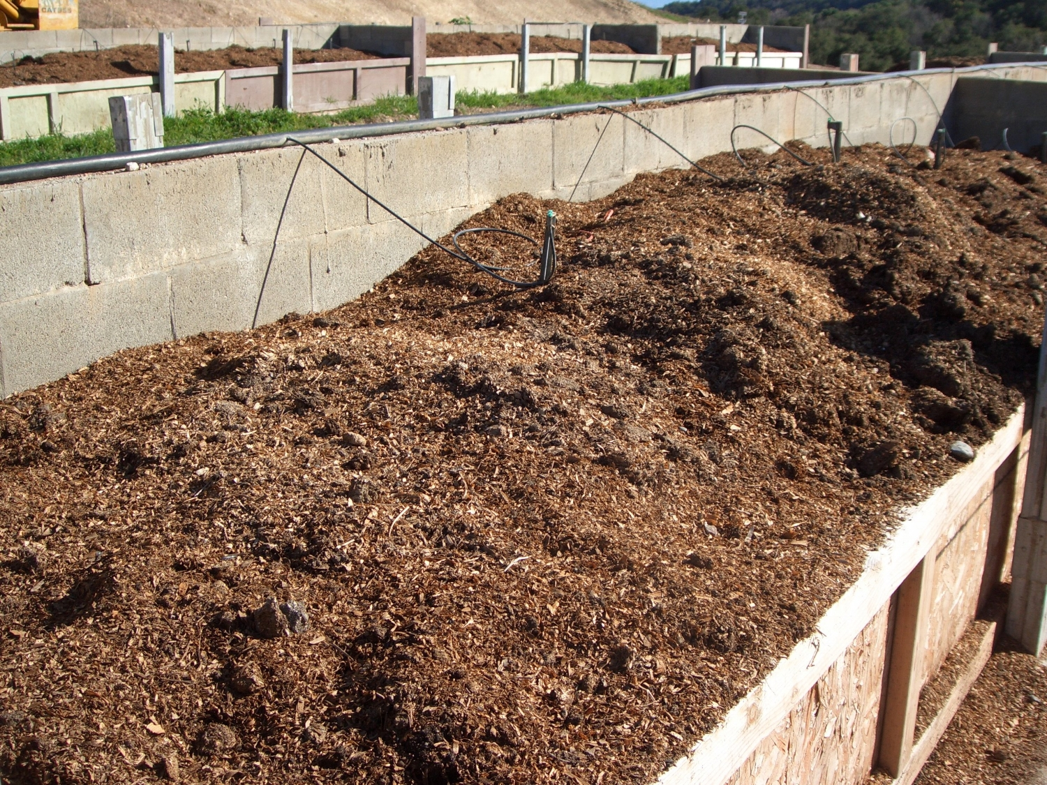 Our very own earthworm beds, this is where we harvest our castings from.