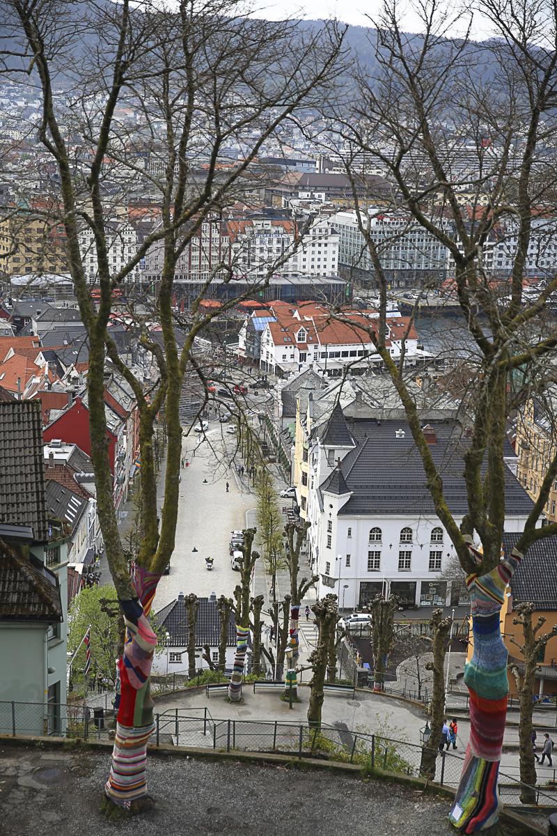 Bergen Down-0495.jpg
