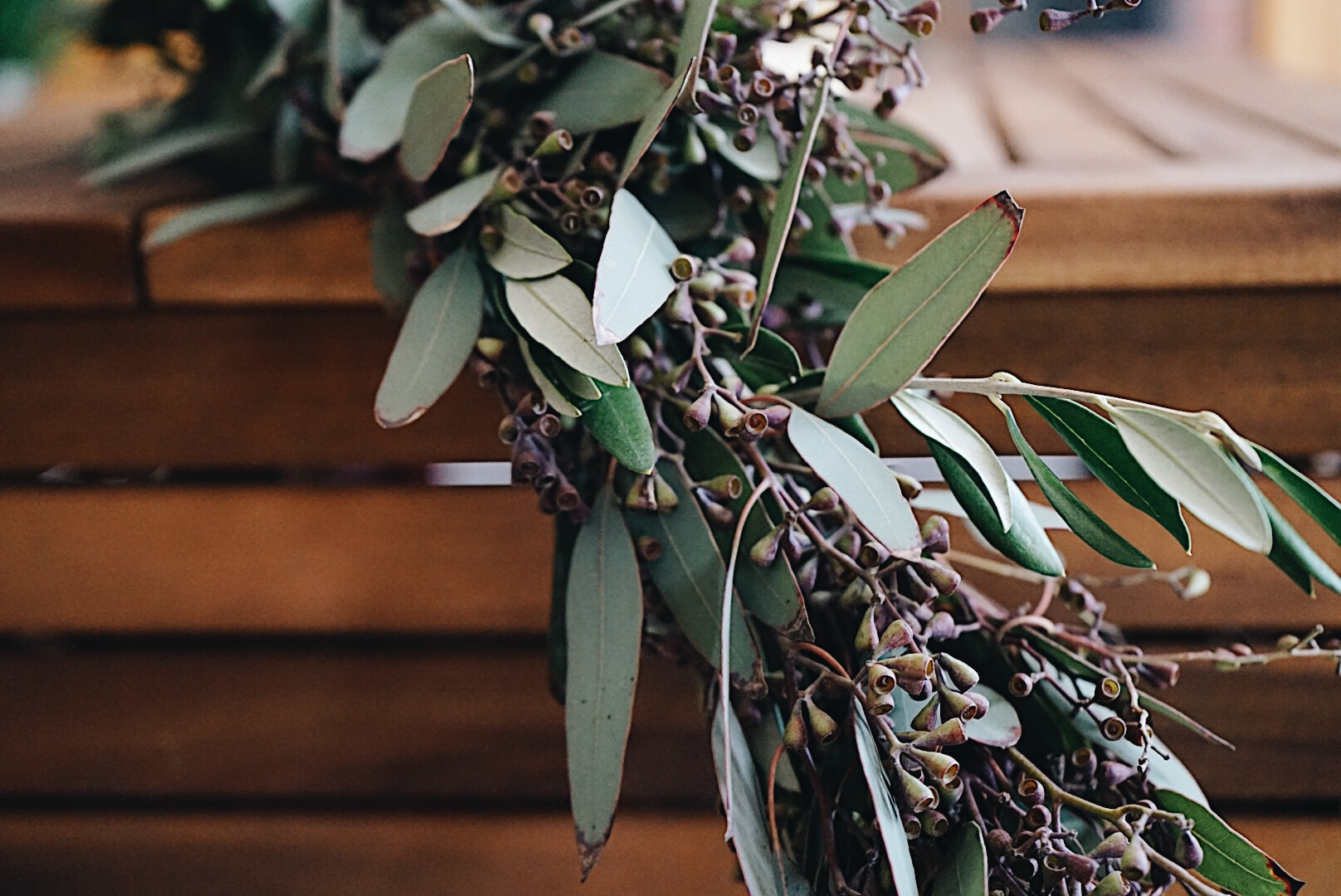 Olive Leaf seeded eucalyptus garland falling off coffee table.jpg