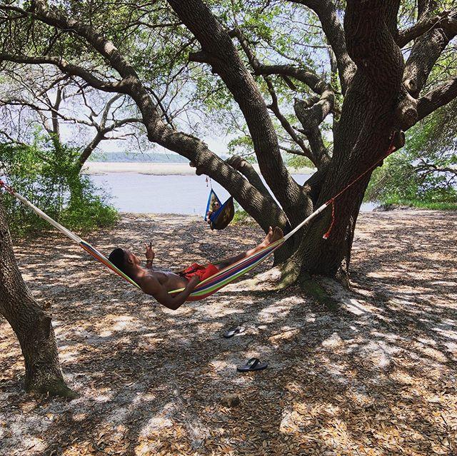 Another hammock island adventure! #highpointsadventure #charleston #standuppaddle #stonoriver
