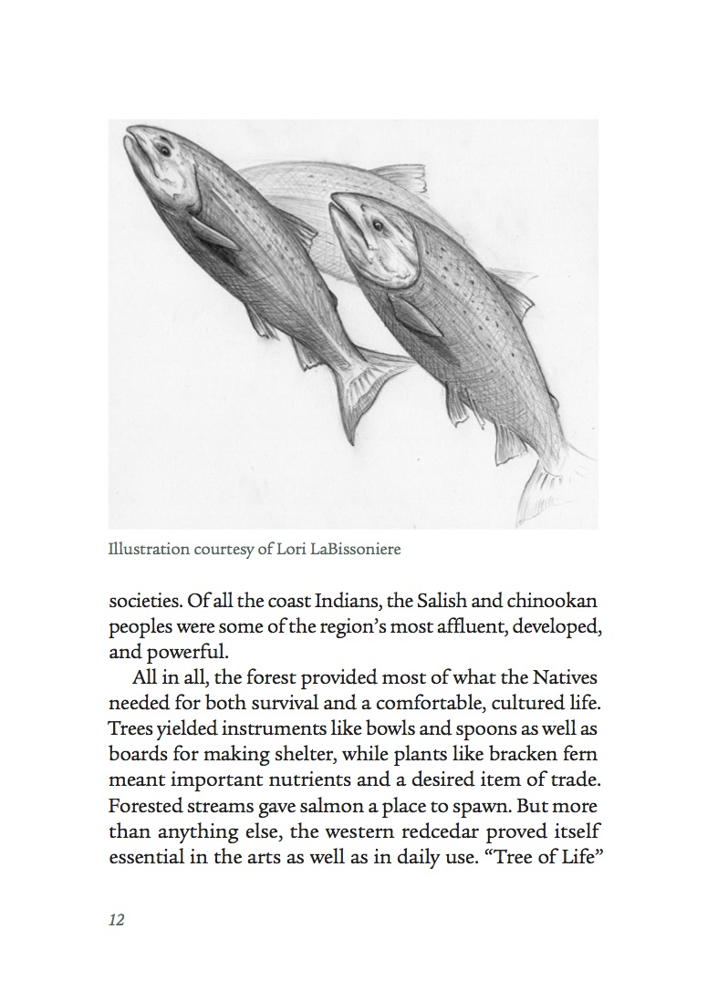 Sierra Club 50 hikes salmon illustration