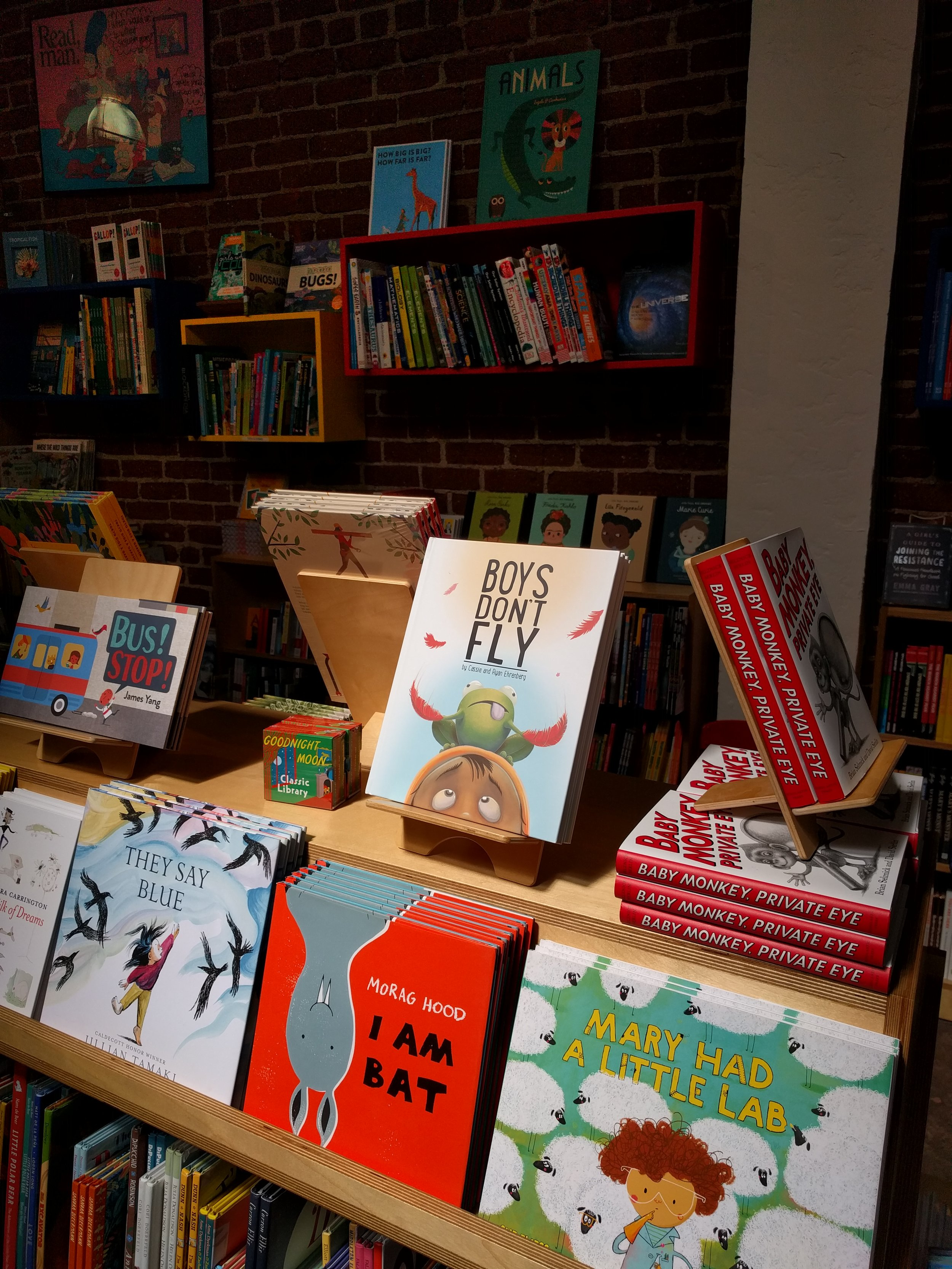 Boys Don't Fly  in Skylight Books