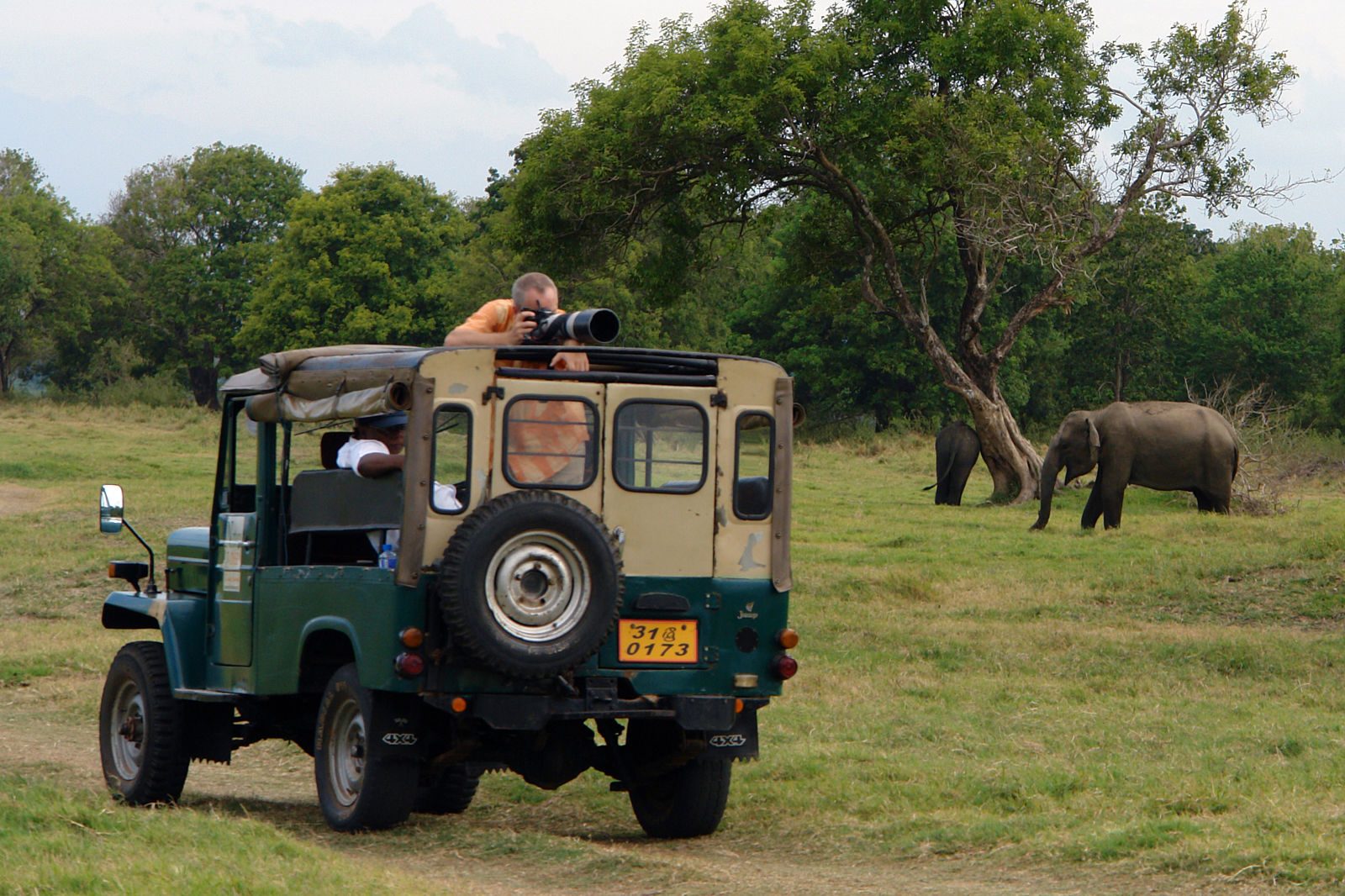 Wildlife safari (Exclusive tours to Sri Lanka)