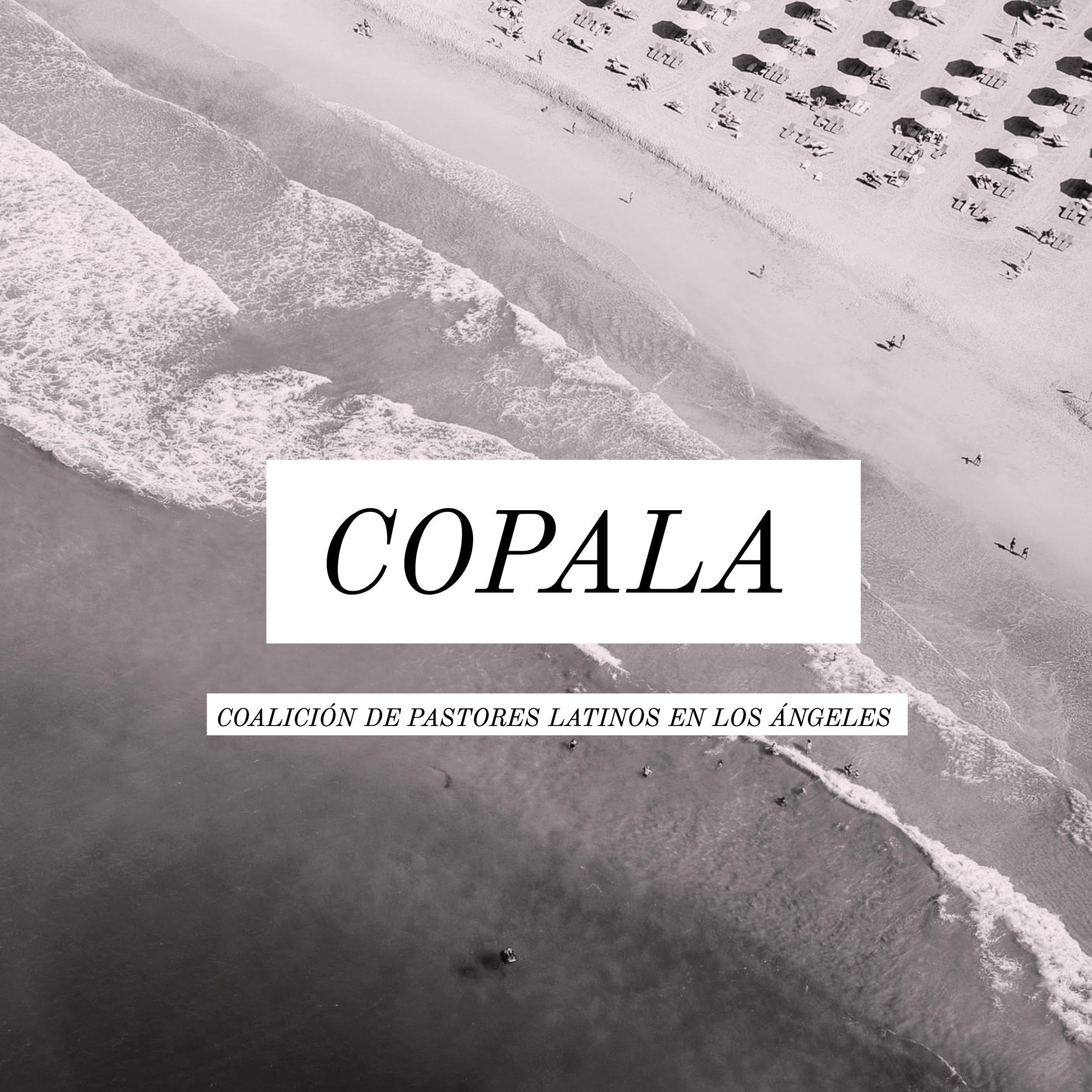 COPALA-1.jpg