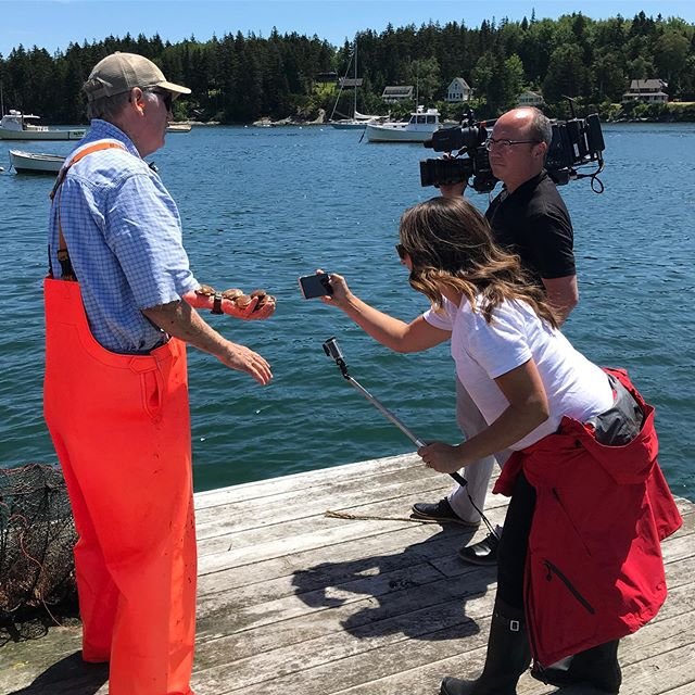 Our scallops are going to be famous! @newscentermaine