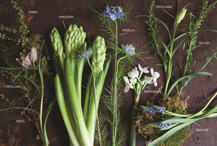 Ingredient Series on Botanical Brouhaha by Denise Fasanello Flowers.jpg