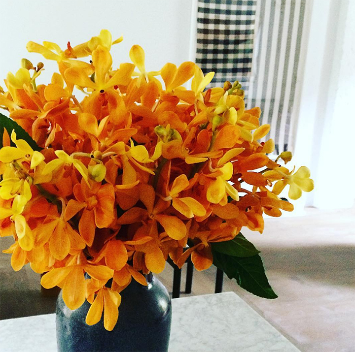 We often design single flower type arrangements. Thinking more about how overall shape and color effects the rooms decor. Here a mass of bright yellow vanda orchids add color to the room of neutrals