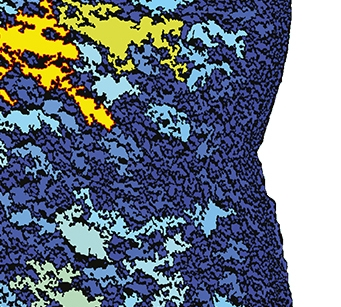 Calibre banner 01-01.jpg