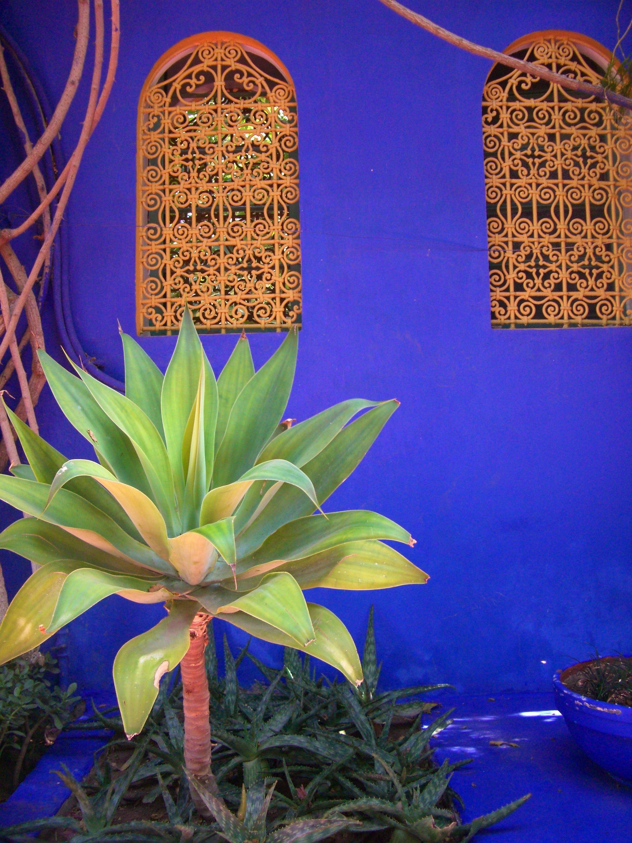 Morocco 160.jpg