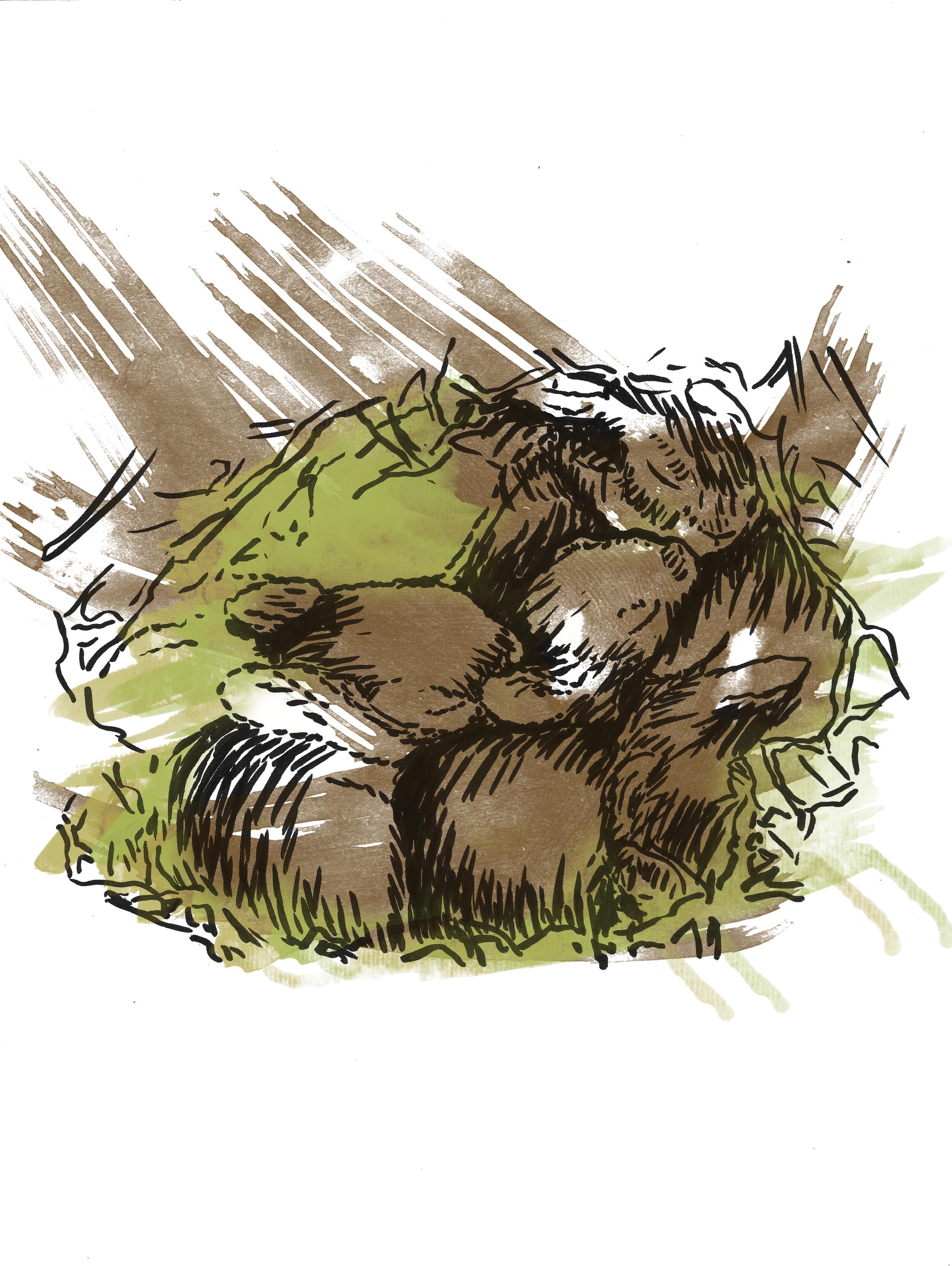 Bunny Fort
