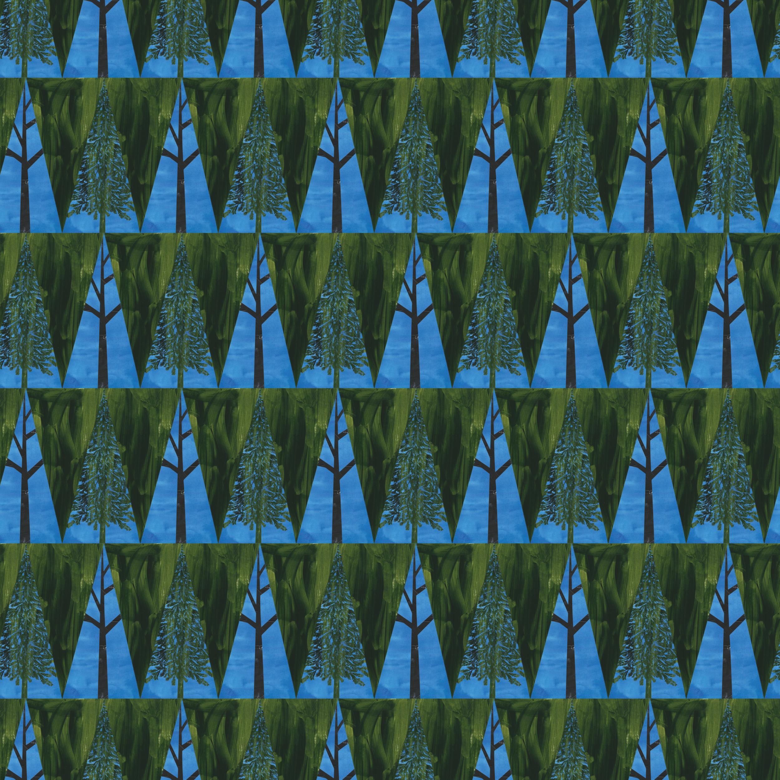 TreePine-01.png
