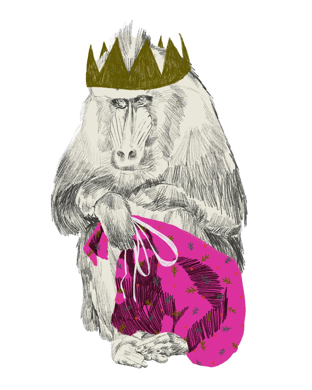 Monkeys1.png