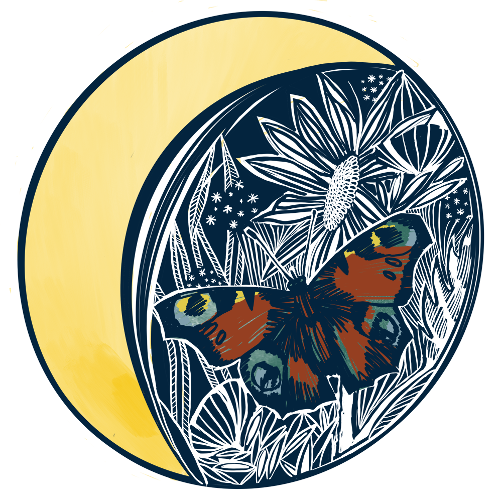 Butterfly_Circle.png