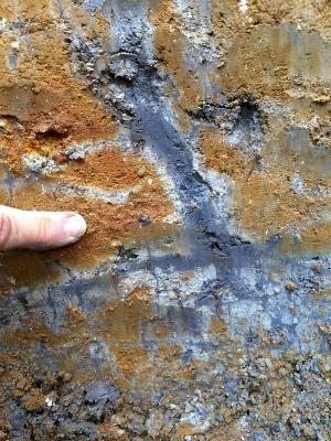 Mottled Soil - Photo courtesy of Google images