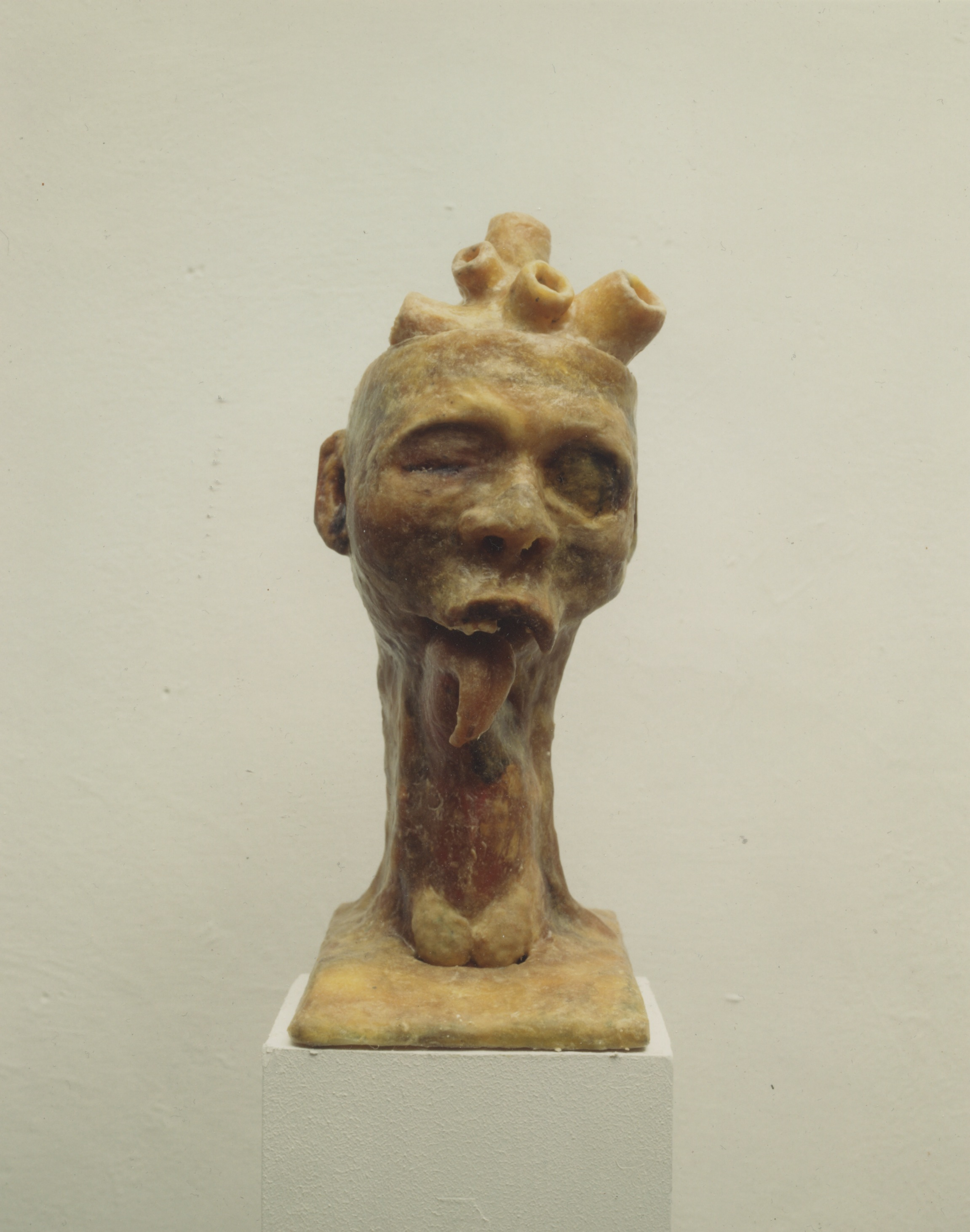"""Head"", 1994.Mixed media: plastikk stamme med voks"