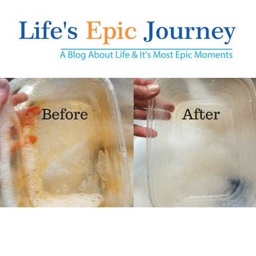 dishfish-scrubber-review-tb-lifes-epic-journey.png
