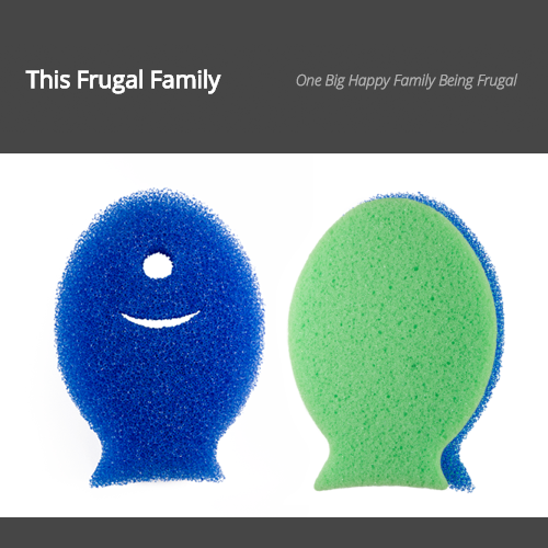 dishfish-scrubber-review-tb-this-frugal-family.png