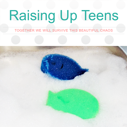 dishfish-dual-scrubber-sponge-review-tb-raising-up-teens.png
