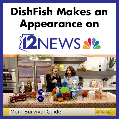 dishfish-channel-12.png