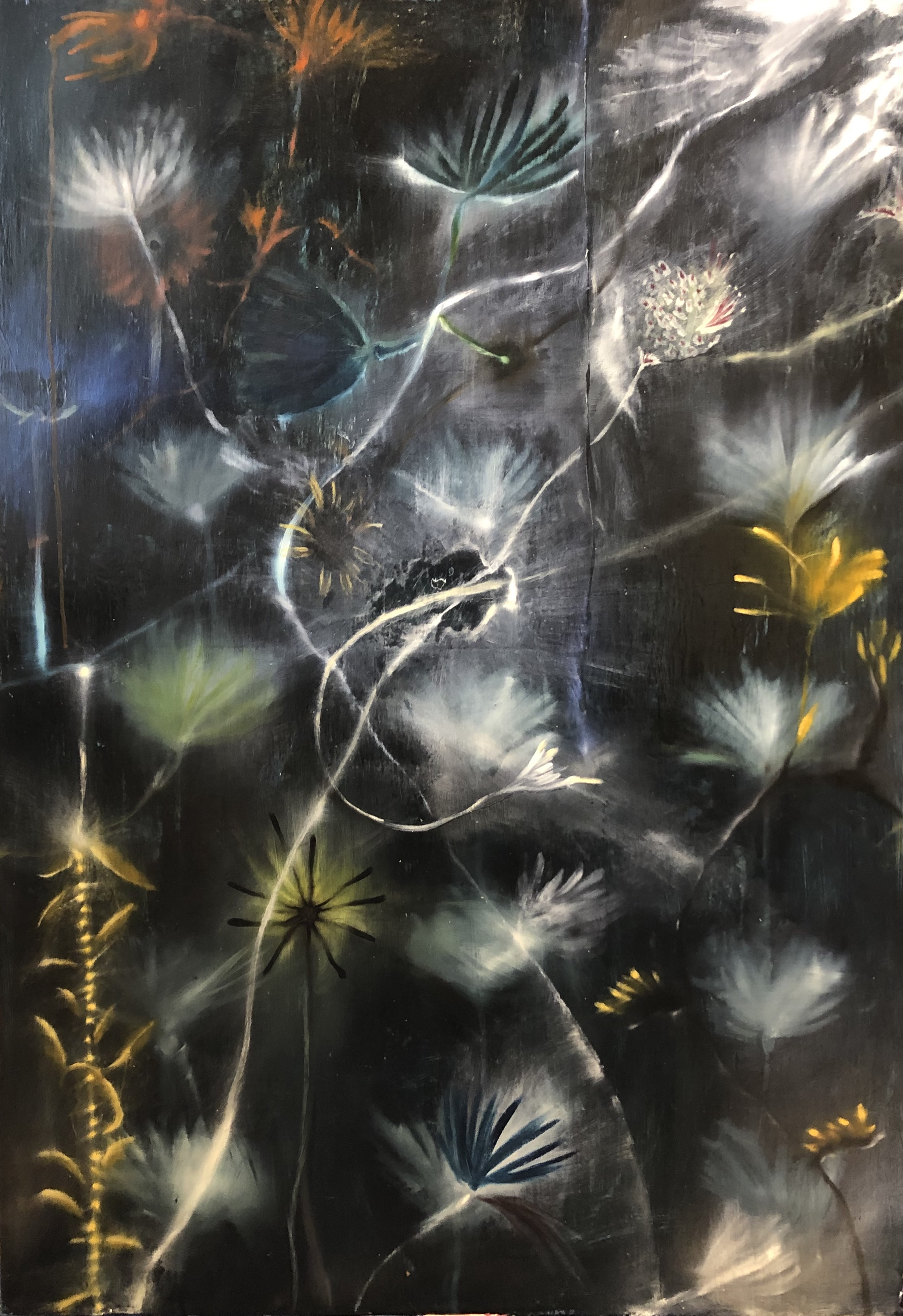 Flowers #2 (at night), 148 x 103 CM, 2019