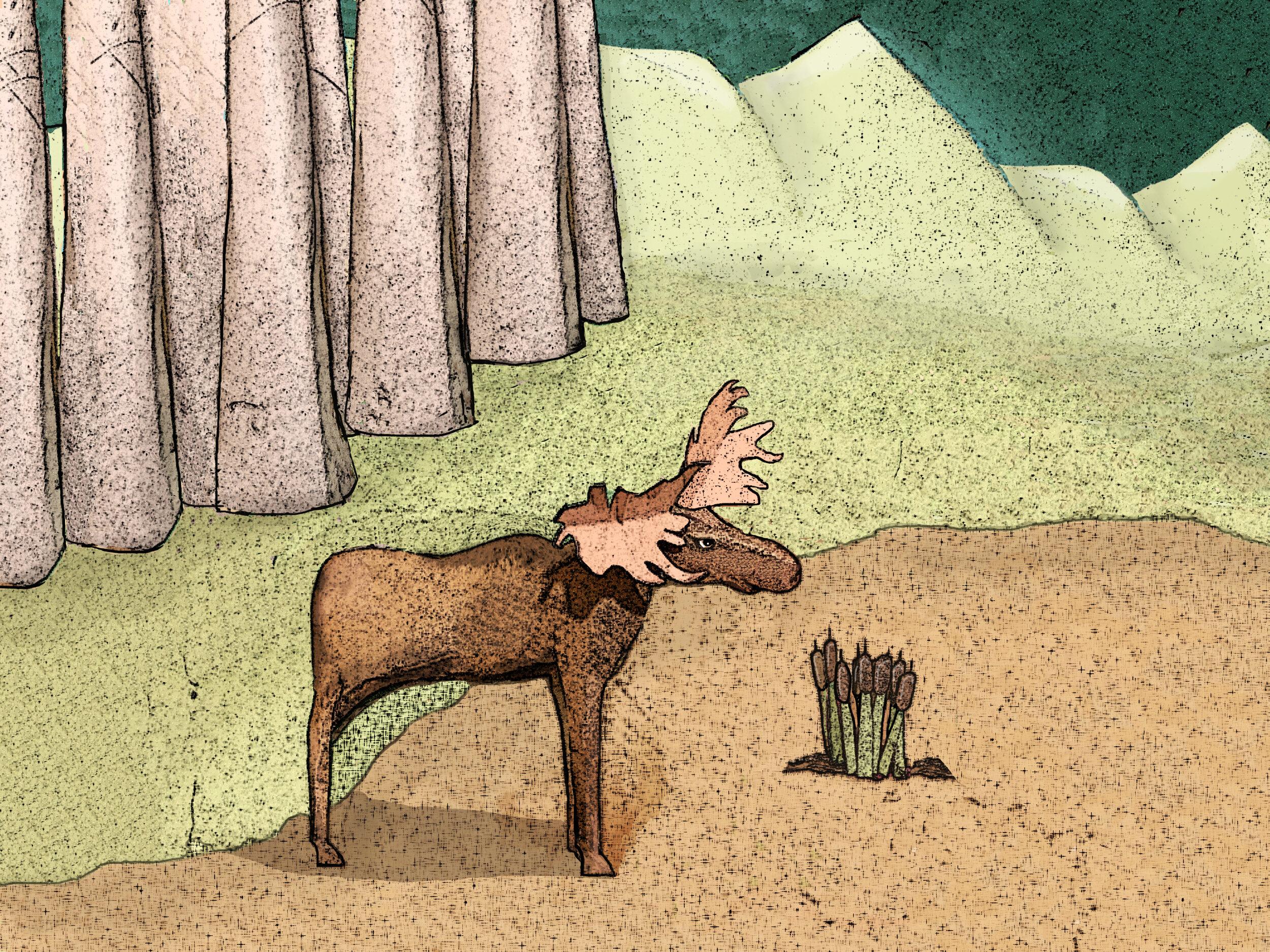 moose final final.jpg