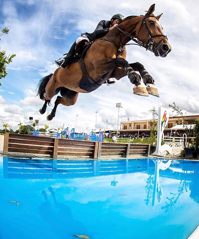 1 Day... Countdown for this amazing Workshop in Wellington - FL see you tomorrow 🍀🔝👏🏻👏🏻👏🏻 www.raphaelmacekworkshops.com  workshop@raphaelmacek.com  #photography #photographer #photooftheday #photoshop #workshop #wellington #wef #work #equestrian #equine #equinephotography #horse #horses #raphaelmacek #sport #olympics #sports #showjumping #photographyworkshop #horsesofinstagram #photooftheday #photographylovers