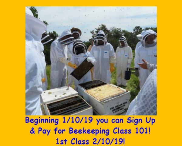 beekeeping class blog.jpg