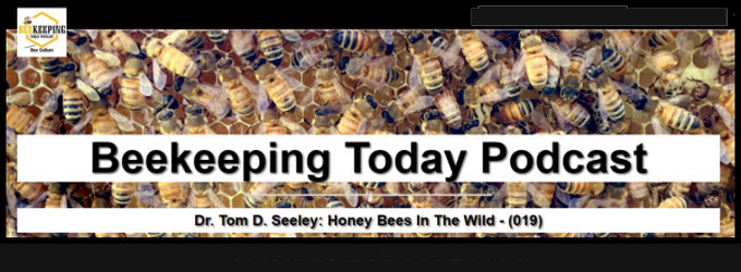 Dr. Tom Seeley Beekeeping Today Podcast.jpg