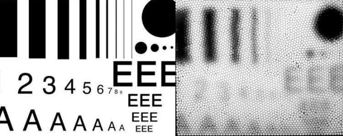 How we see fine detail with our eyes, and how a bee eye camera views the same information at a distance of about 15cm. Credit: Sue Williams and Adrian Dyer/RMIT University