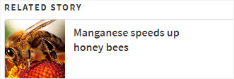 Manganese speeds up honey bees