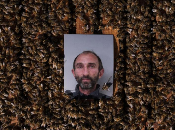 Accused of stealing hundreds of beehives throughout the Central Valley over several years, Pavel Tveretinov and an alleged accomplice, Vitaliy Yeroshenko, were arrested in 2017. Their preliminary trials are scheduled for this summer. PHOTOGRAPH BY LUCAS FOGLIA, NATIONAL GEOGRAPHIC