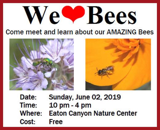 We Love Bees post 2.jpg