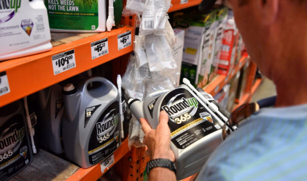 Monsanto's Roundup at a store in San Rafael, California. The product's manufacturer maintains that glyphosate is safe when used as directed.JOSH EDELSON/AFP/ GETTY IMAGES