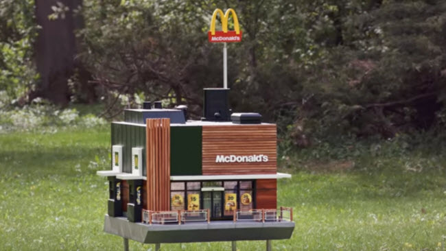 McDonald's for bees.jpg