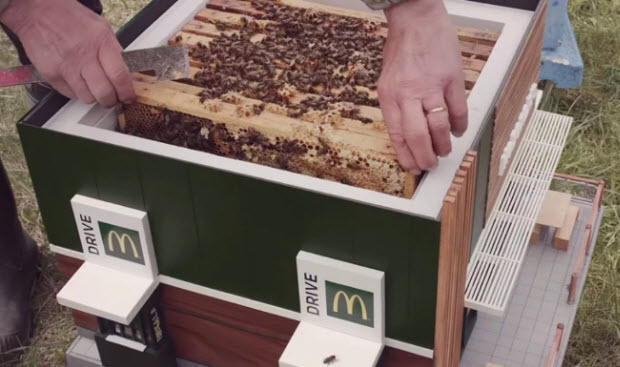 McDonald's has opened its smallest restaurant - which is actually a beehive. Credit: NORDDDB