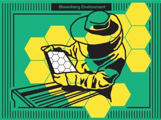 Bloomberg Environment.jpg