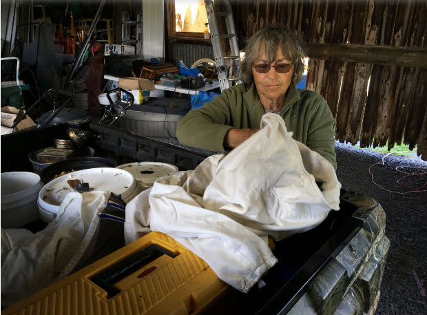 Beekeeper Nancy Cole prepares her protective clothing before going out to her hives at her property near Yarker. (Elliot Ferguson/The Whig-Standard)