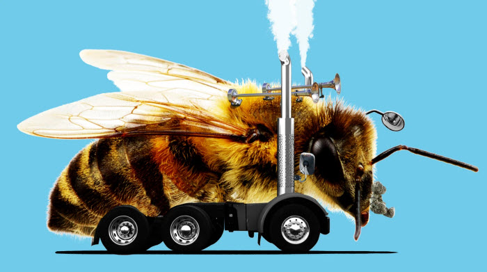 Illustration: GMG Art Department/Peter Nelson (The Pollinators)
